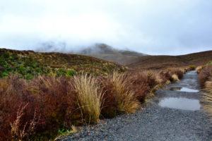 Tongariro National Park New Zealand UNESCO World Heritage