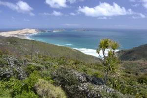 Cape Reinga North Island New Zealand - New Zealand Travel Tips