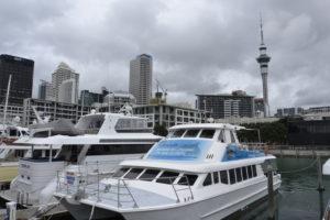 Harbour of Auckland, New Zealand