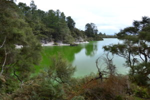 Geothermic area in New Zealand - New Zealand Travel Tips
