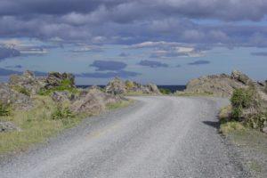 Cape Palliser New Zealand