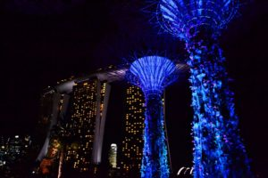 Marina Bay Gardens by the Bay Singapore - Singapore Travel Tips
