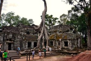 Ta Prohm Tomb Raider Temple in Angkor Wat Siem Reap Cambodia Kambodscha - Cambodia Travel Tips