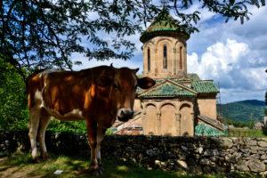 Gelati Monestary Kutaisi Georgia - Travel tips for Georgia